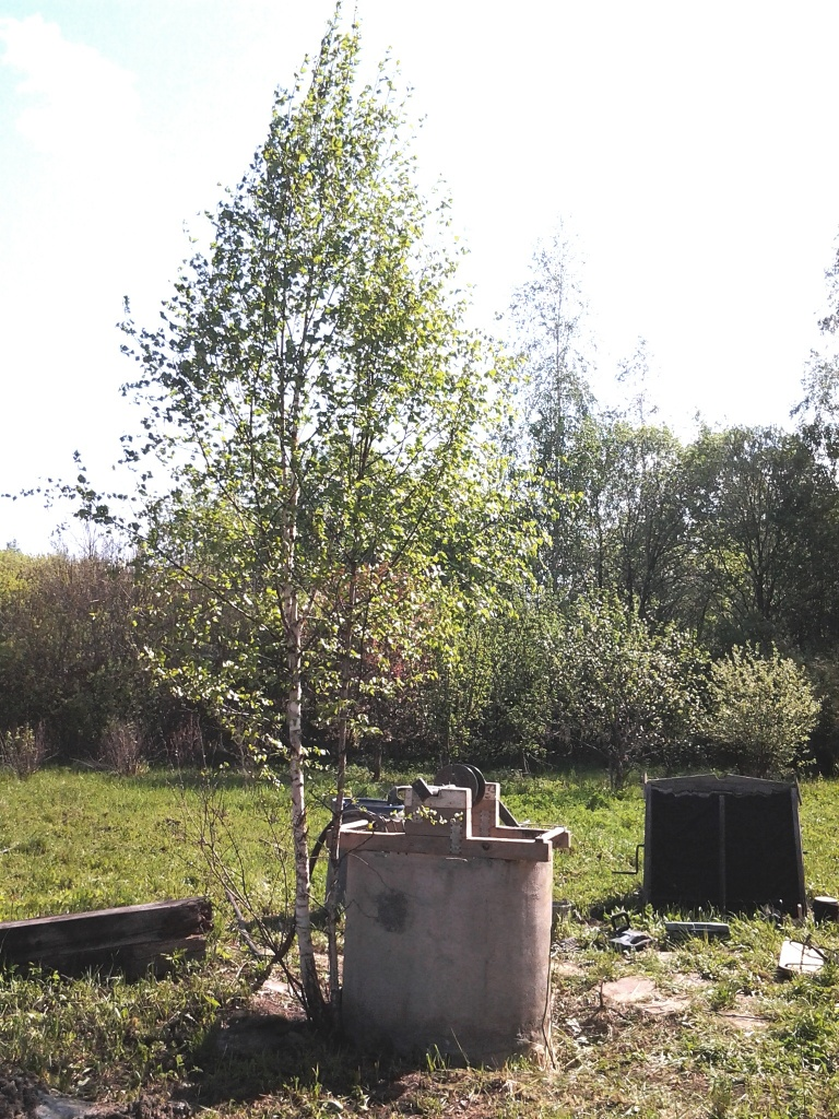 Чистка питьвого колодца в Дмитровском районе