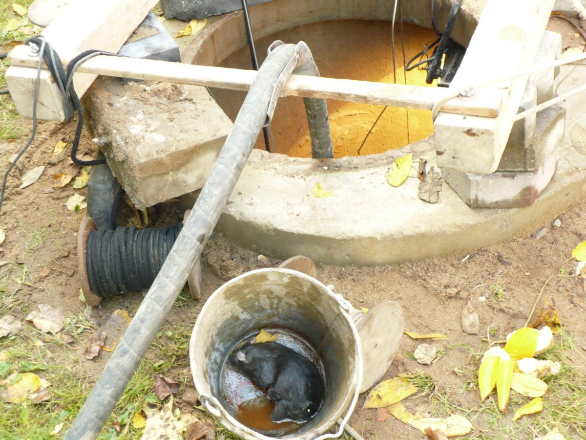 Чистка и ремонт колодца в Ивантеевке
